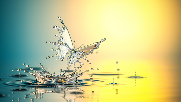 A digital butterfly emerges from a liquid.